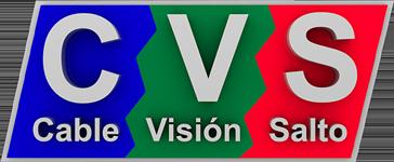 Logo de CVS
